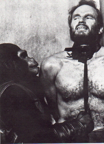 Planet of the Apes DVD Link